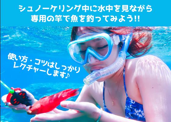 石垣島で見釣り